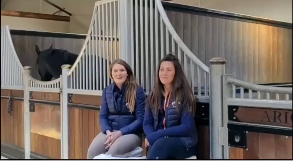 Arion Stud talk about their auction purchase