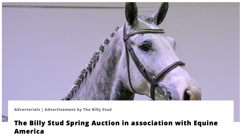 World of Showjumping Auction Coverage